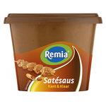 Remia Satesaus